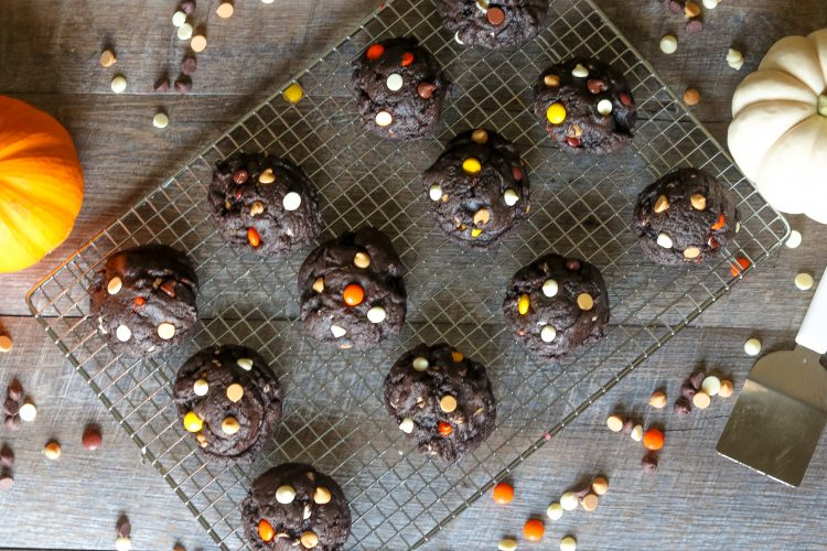 Dark Chocolate Chip Halloween Cookies