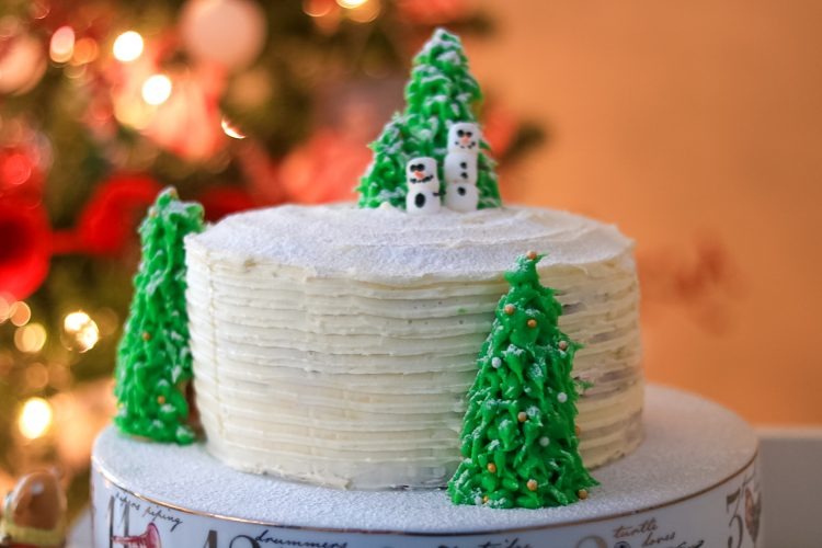 White Chocolate Cranberry Christmas Cake